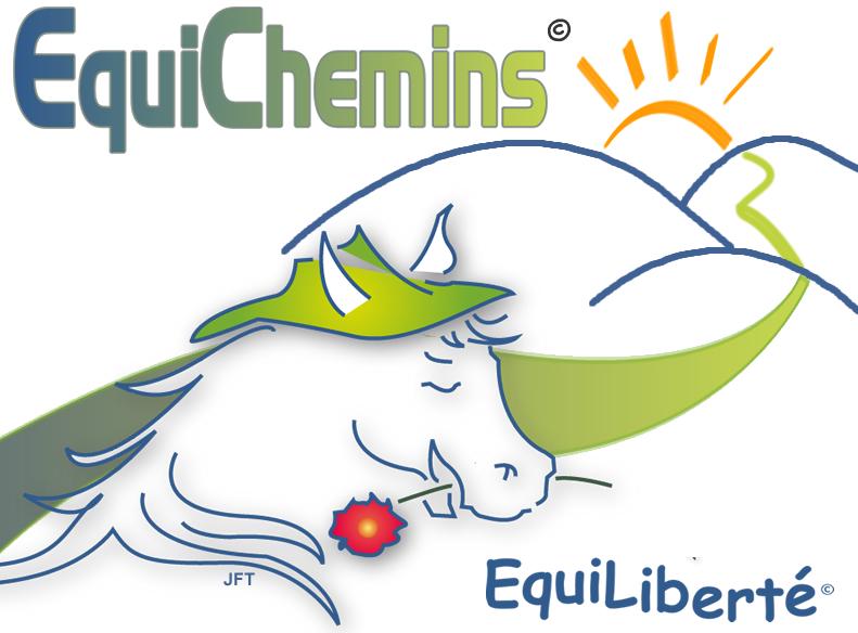 logo_equichemins_transp